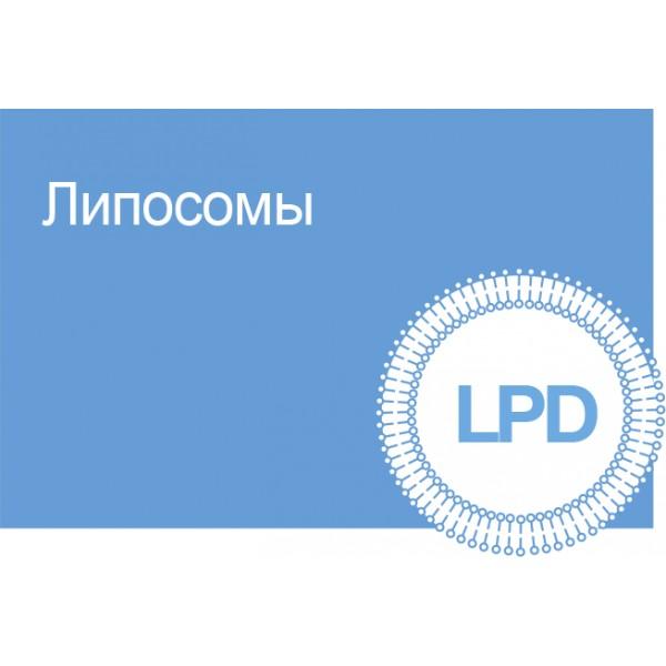 LPD EYELASHER