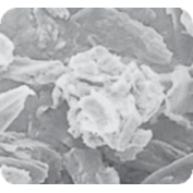Микрокристаллическая целлюлоза 200